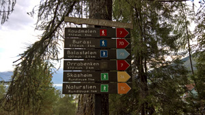 Network of hiking trailsr